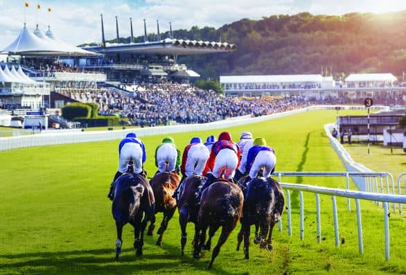 Glorius Goodwood 2016 - Chauffeur